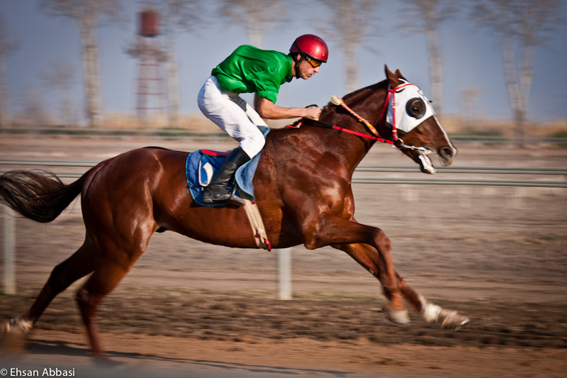 The Turkmene Horse